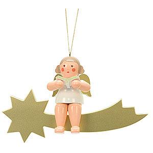 Weihnachtsengel Sonstige Engel Engel auf Sternschnuppe - 32,0 cm